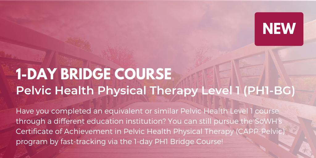 1-Day PH1 Bridge Course